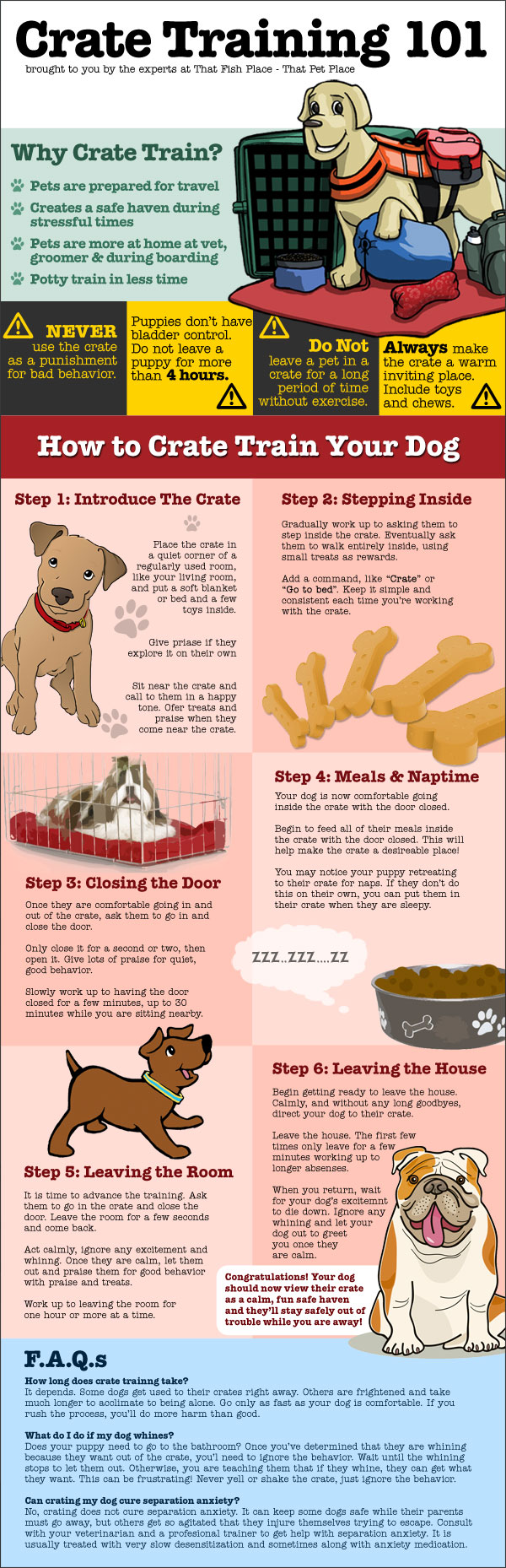 Crate Training 101 Infographic