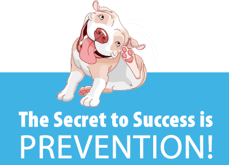 The Key to Success is Prevention