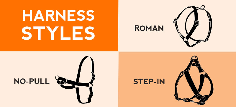 Harness Styles