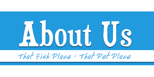 About That Fish Place - That Pet Place