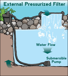 Pond water garden installlation maintenance guide for Garden pond pump setup