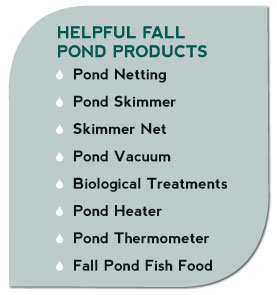 Helpful Fall Pond Products