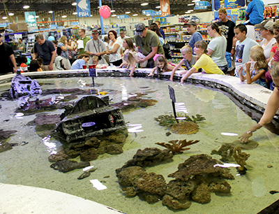 Join us for a Touch Tank Feeding Show- Saturdays at 3pm!