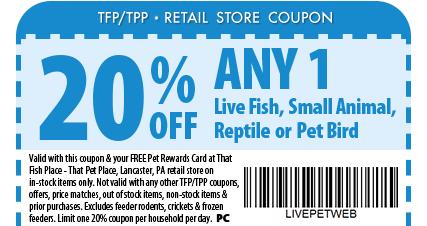 Visit that fish place that pet place 237 centerville for That fish place coupon