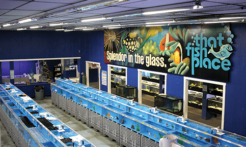 Pet Supplies And Fish Supplies At That Fish Place That Pet Place