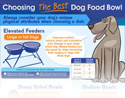 Choosing the perfect dog bowl (infographic)
