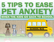 5 Tips to Ease Pet Anxiety when the Kids go Back to School