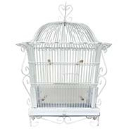 Canary & Finch Cages