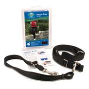 Training Collars & Halters