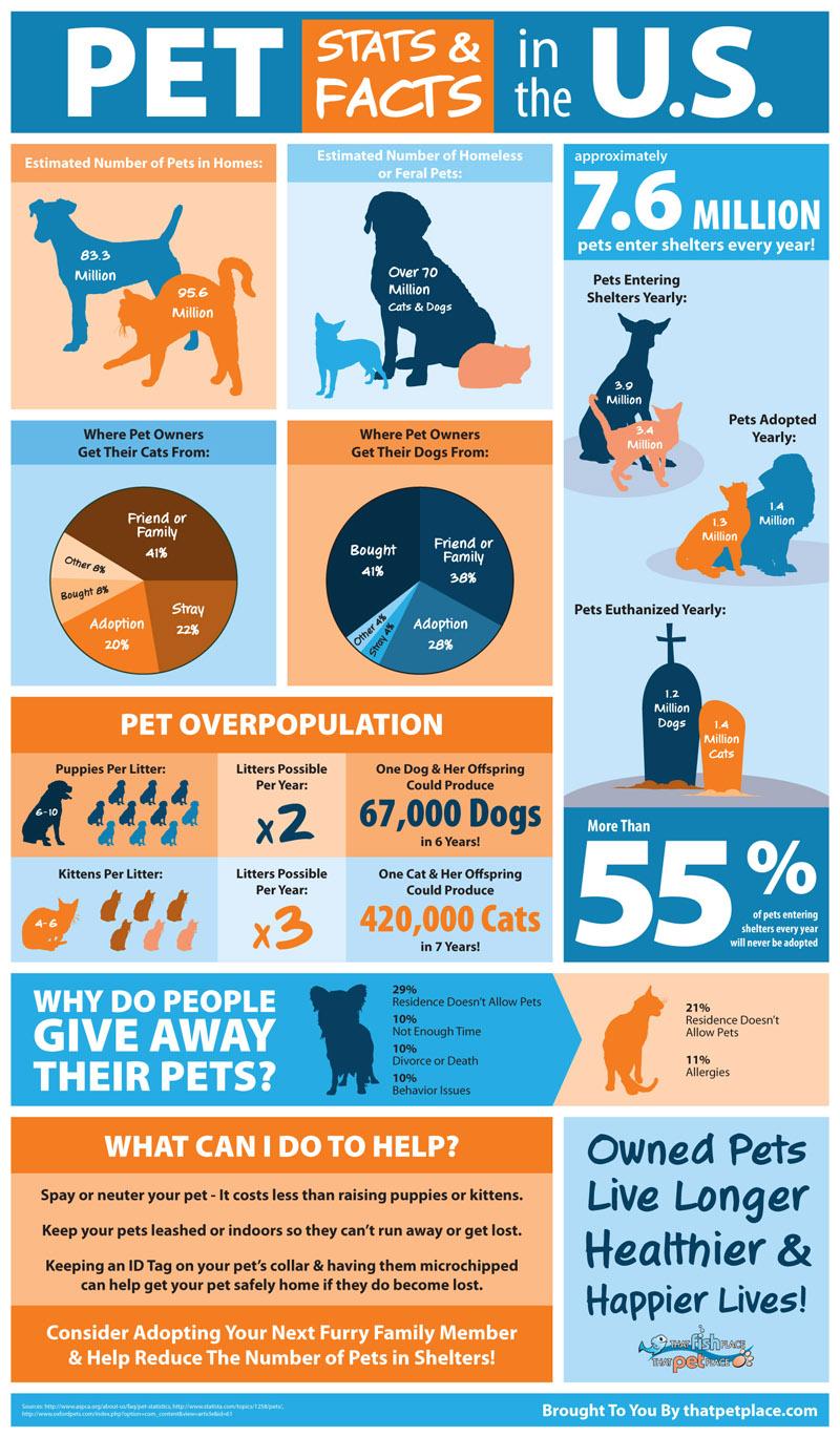Pet Ownership Amp Shelter Statistics Infographic