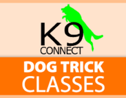 K9 Connect Dog Trick Classes