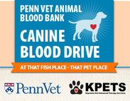 Kpets Host PennVet Blood Drive