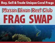 Mason Dixon Reef Club Frag Swap