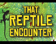Reptile Invasion