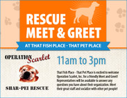 Operation Scarlet Meet & Greet