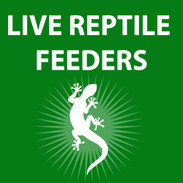 Live Reptile Feeders