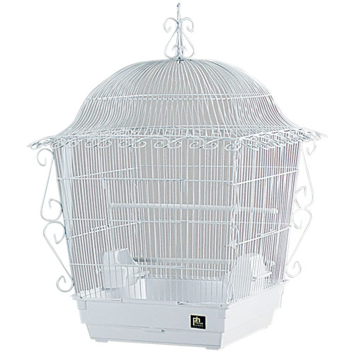 Scrolled Cockatiel Cage 18 In X 18 In X 25 In White