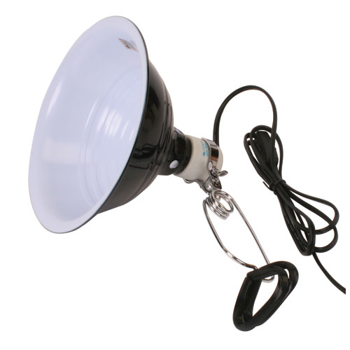 Reptile Lights Lighting Systems Amp Supplies That Pet Place